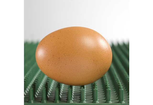 ブロイラー種鶏関連商品